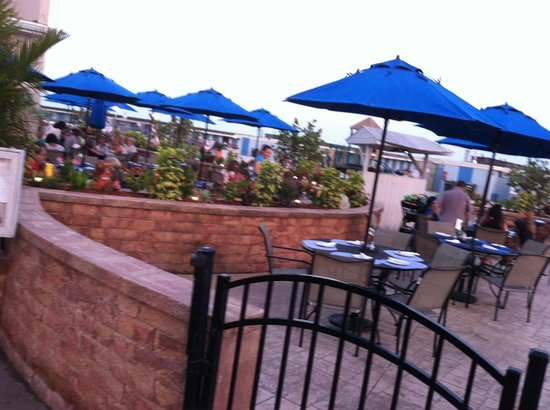 maliblue oyster bar lido beach restaurant reviews