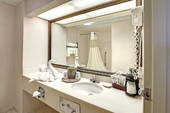 Hampton Inn Hot Springs: Hotel Bathroom
