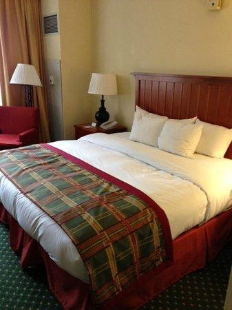 Doubletree Hotel Chicago Oak Brook: Room