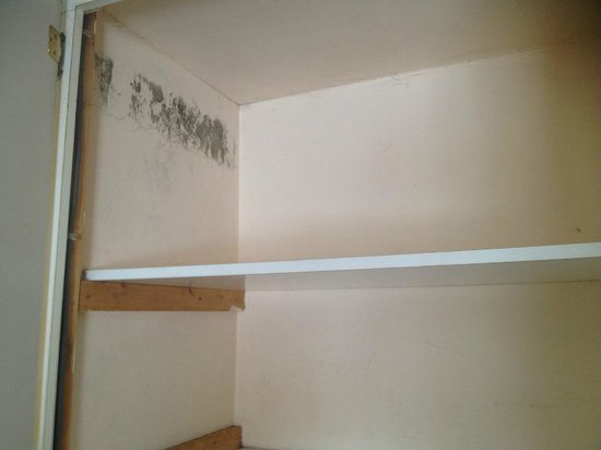 Dun Roamin: Heavy mold in wardrobe. No coat hangers available