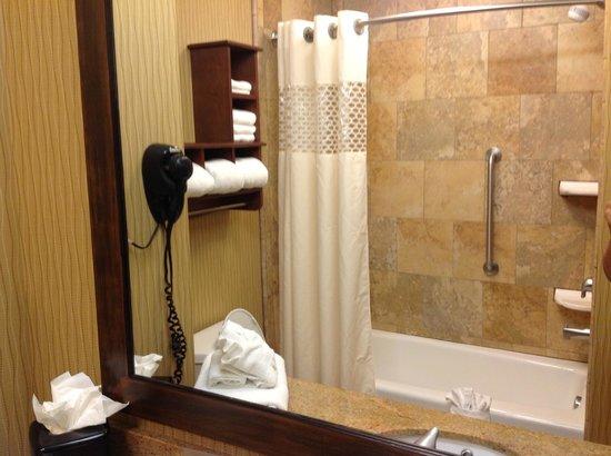 Hampton Inn & Suites McAllen: Vista de la regadera