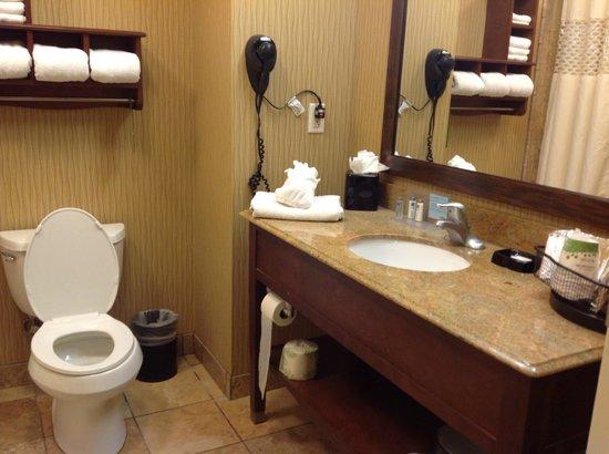Hampton Inn & Suites McAllen: Vista del baño