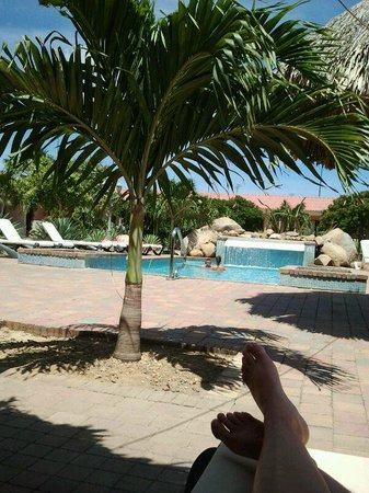 Camacuri Apartments Aruba: Zwembad Camacuri
