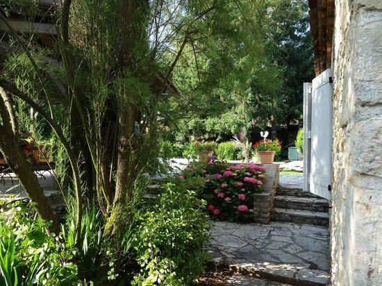 Domaine du Cloucau : une partie du jardin : hortensias en fleur