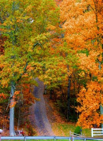 Hocking Hills State Park: hh fall 2012