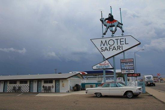 Motel Safari: The Motel