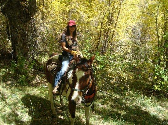 Smith Fork Ranch: Tulsa