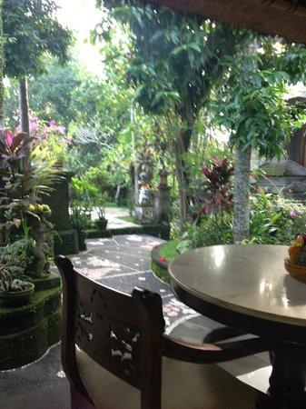 Alam Jiwa: view from breakfast table