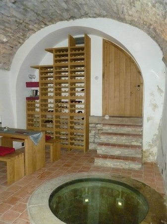 Hotel U Zeleneho hroznu (Hotel At the Green Grape) : Wine celler and cistern