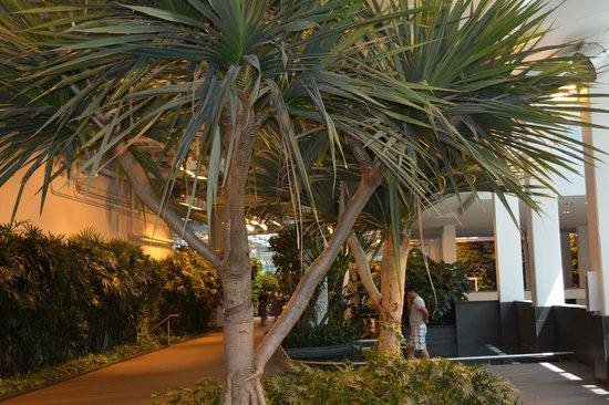Stephen Avenue Walk: Inside the mall