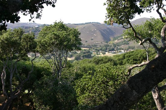 Carmel Valley Ranch: View from suite balcony