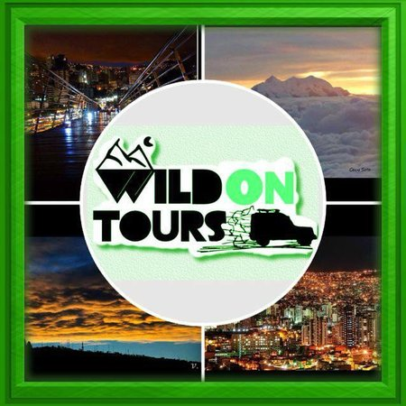 Wild on Tours - Private Tours