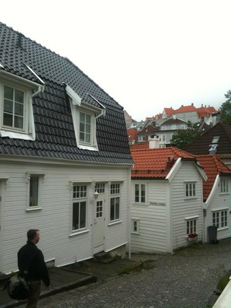 View of area near Skuteviken Guesthouse