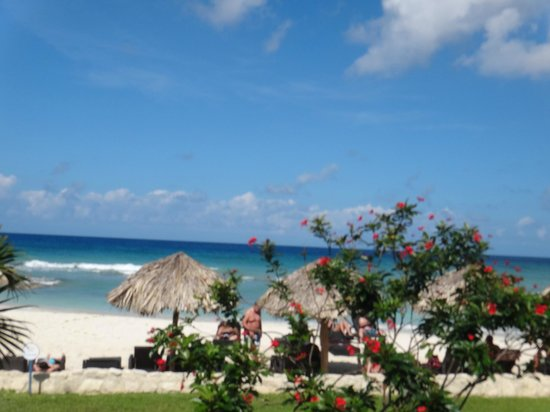Secrets Wild Orchid Montego Bay: View from the tiki bar