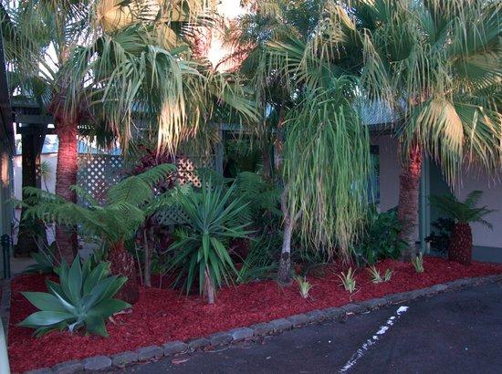 BEST WESTERN Ballina Island Motor Inn: Garden near rooms & pool
