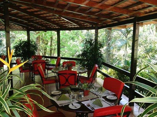 Casa Corcovado Jungle Lodge: Bar El Bosque
