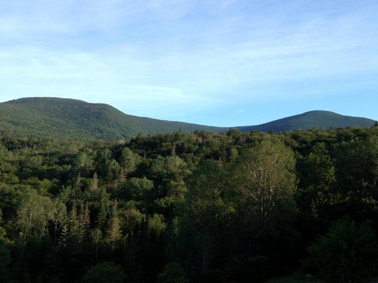 Moosilauke Ravine Lodge: View from the lodge