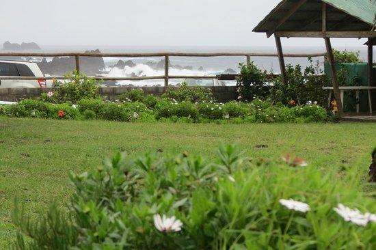 Camping Mihinoa : área de camping