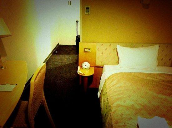 JR Kyushu Hotel Kagoshima : 十分な部屋