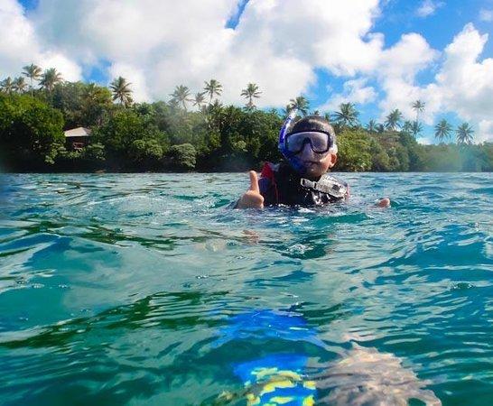 Savasi Island Resort: Snorkelling