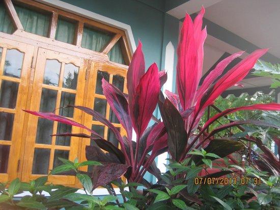 Little Rose Inn: our hotel