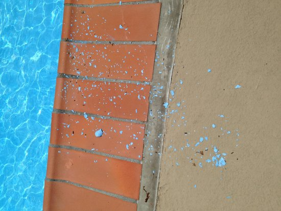 Holiday Inn Country Club Plaza: Peeling Pool Paint
