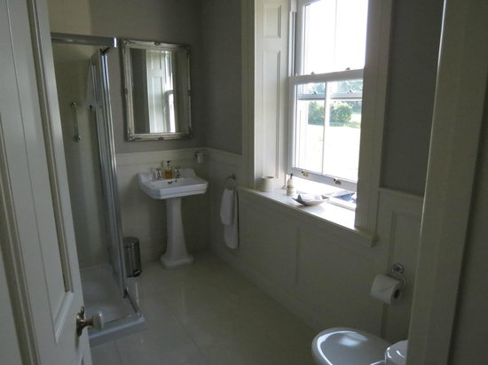 Coolefield House: lovely bathroom with fabulous shower