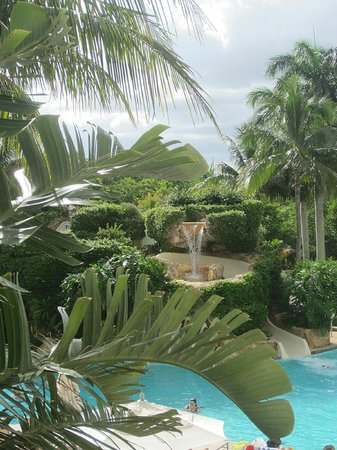 Hilton Naples: Pool at Waldorf Astoria, which we had use of