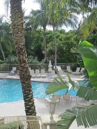 Hilton Naples: Pool at sister hotel, Waldorf Astoria