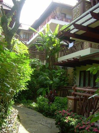 Anyavee Ao Nang Bay Resort: Зеленая территория отеля.