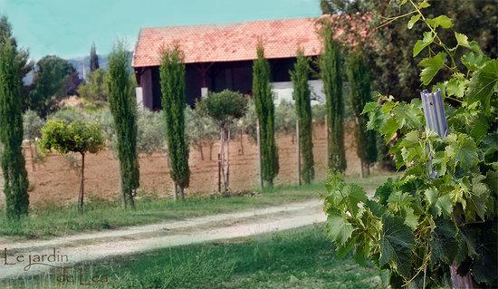Talage picture of le jardin de lea aix en provence for Le jardin de lea