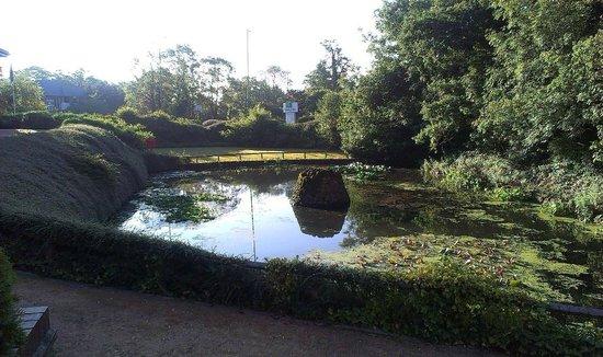 Crowne Plaza Solihull: Pond