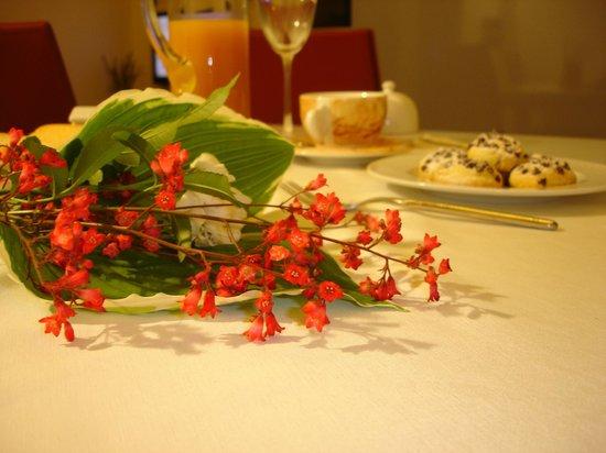 La Casa di Linda : I fiori ed il verde cullano ogni momento della giornata, Anche le cicale ed i grilli ..la notte!