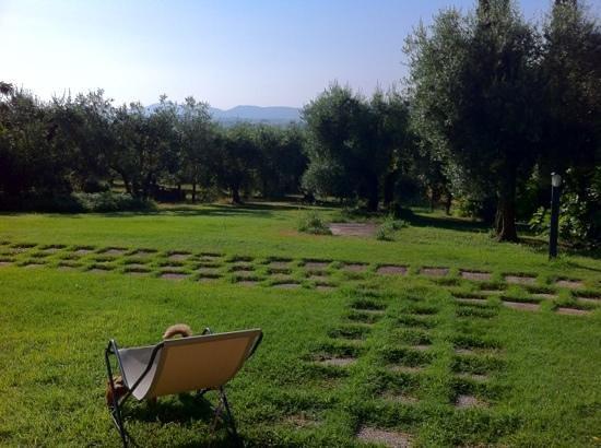 Agriturismo Poggio del Sole: svegliarsi qui alla mattina è stato spettacolare!!!