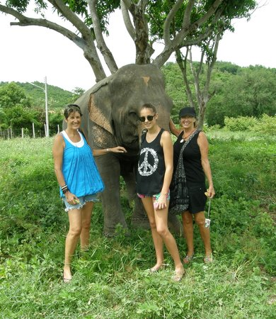 Hutsadin Elephant Foundation: What a gorgeous day we had