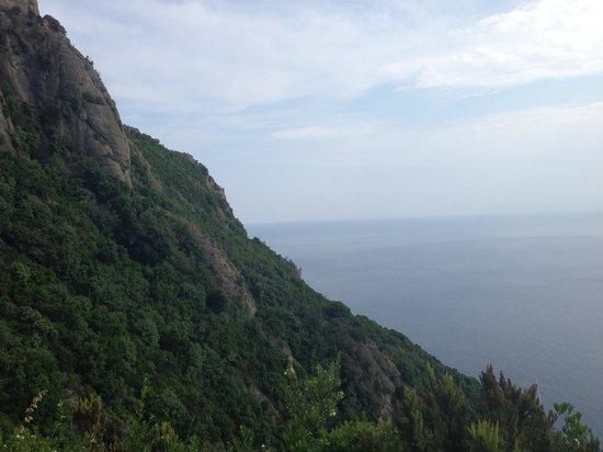 Camogli - San Rocco - Batterie - San Fruttuoso Trail