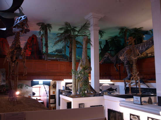 Dinosaurland Fossil Museum: inside the museum