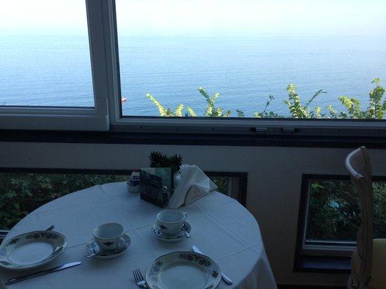 Villa Garden Hotel: sala colazioni