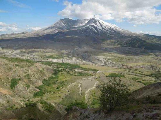 Mount St. Helens Visitor Center: Mt St Helens from near Johnson's Ridge Observatory