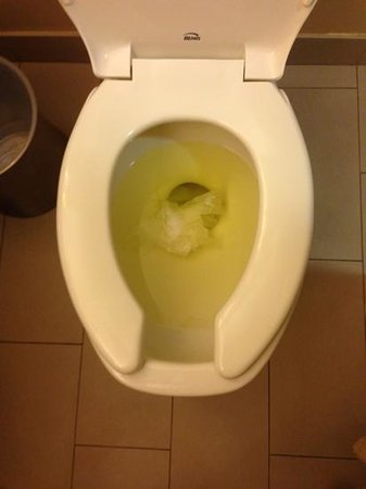 Hyatt Regency Crystal City at Reagan National Airport: leftover urine in my toilet when first opened?!