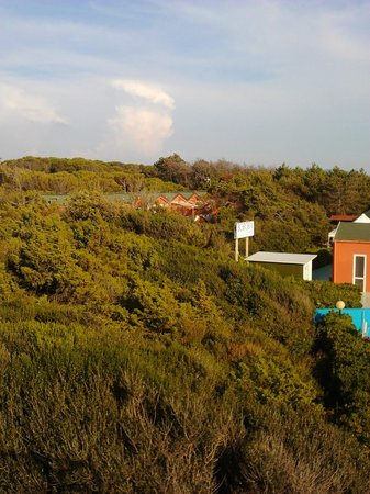 Boboba Il Villaggio : Apartment building in the trees, viewed from top of slide