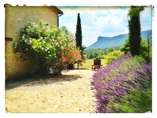 la grange photo de mas des violettes valflaun s tripadvisor. Black Bedroom Furniture Sets. Home Design Ideas