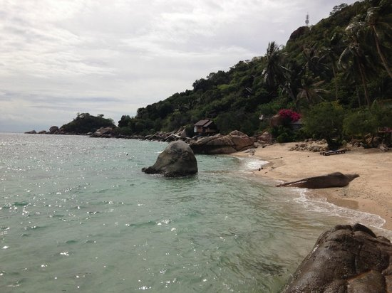 Pinnacle Koh Tao Resort: Beach