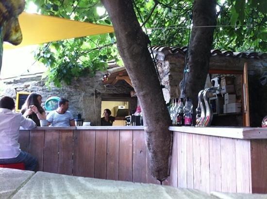 La Cantine Du Cure: le bar sous le figuier
