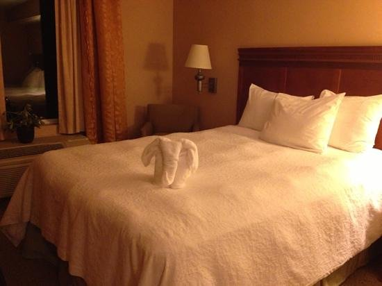 Hampton Inn & Suites Poughkeepsie: housekeeping got creative!