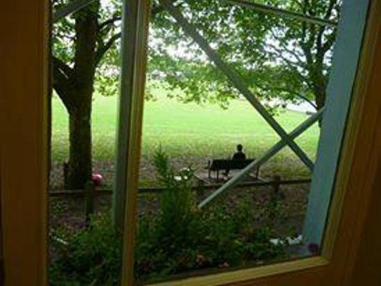 Regent Hotel : Вид из окна во время завтрака