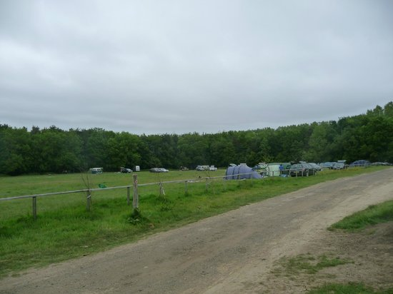 Forgewood Camping: Rather busy