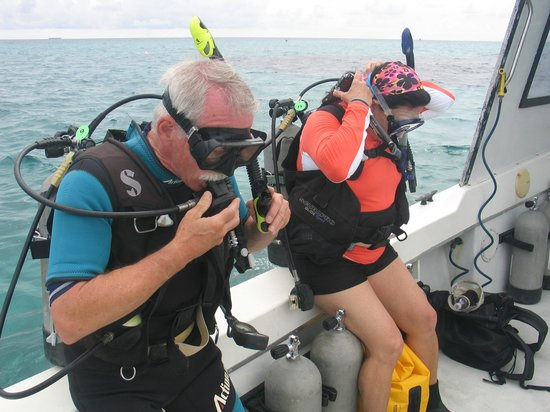 Dive Abaco! : Enjoying the reefs