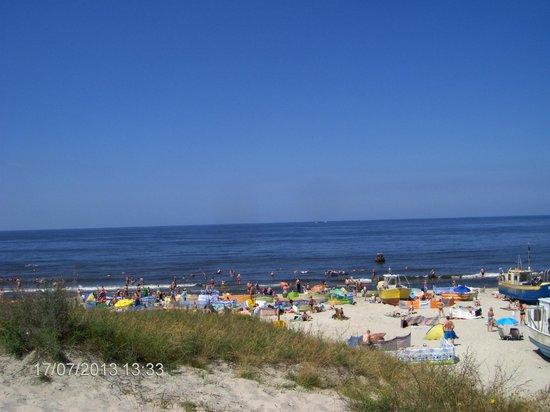 Sloneczny Dwor: ten widok wynagradza wszelkie niedociągnięcia, na plażę ok. 15 minut marszu