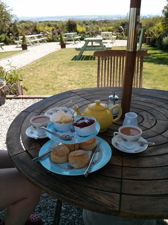 Green Pig Farm Tea Rooms